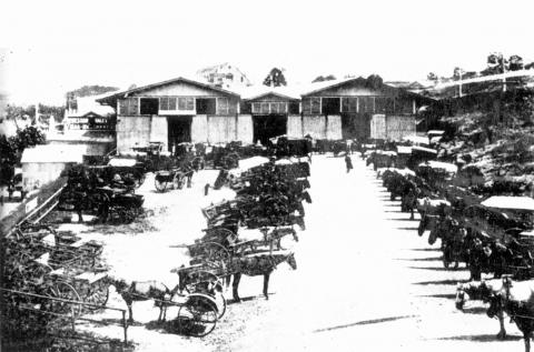 Old Roma Street Markets with horses and carriages in front