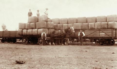 Wool bales from Yarron Vale at Charleville Railway Station, 1897