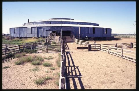 Woolshed, Isis Downs, Blackall