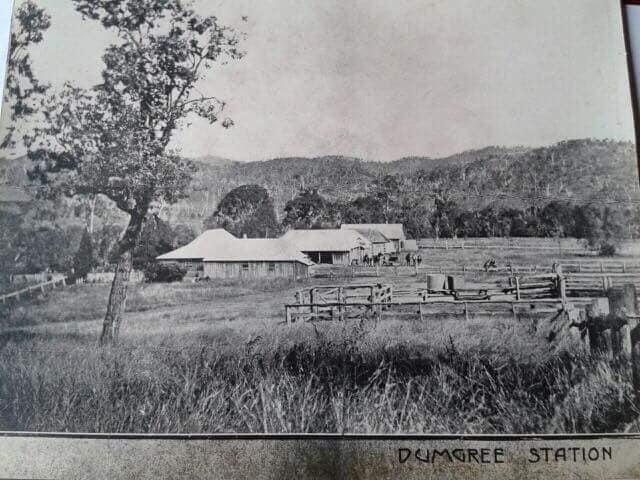 Black and white photograph of the Dumgree Homestead, outbuildings, and stockyards.  The buildings are all single-storey, rough timber with corrugated iron roofs.  Bob Fry from the Gladstone - Banana mail coach is changing his horses over in fenced paddock near the sheds.